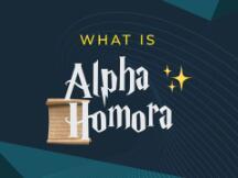 锁仓量超Yearn,代币30天涨1000%,一文了解Alpha Homora(ALPHA)爆发动因