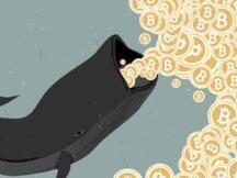 比特币巨鲸数量再次增长,他们来自哪里?