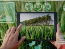 """物联网加持 """"区块链+农业""""走向现实"""