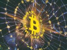 """美国前财长萨默斯发声:比特币有望成为""""数字黄金"""""""