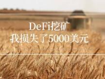 DeFi农业挖矿让我损失了5000美元