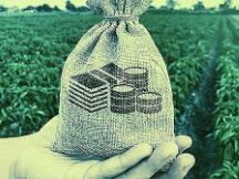 BTC存款收益率对比 如何获得更高收益?