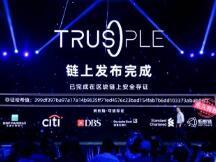 """蚂蚁链国际贸易平台Trusple发布,中小企业""""卖全球""""不再愁"""