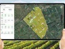 区块链+数字农业:应用与探索报告