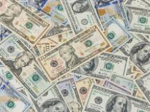 显微镜下:美元的真实成本