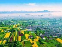 湖南省发文:聚焦特色区块链产业生态,开展精准招商