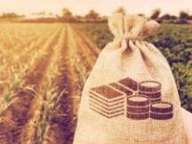 DeFi稳定币现状与挖矿收益机会