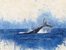 某鲸鱼转入近63万个ETH,Compound锁定价值逼近100亿美元里程碑