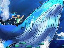 以太坊高手续费吓退散户DeFi投资者使巨鲸获利