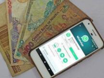 首个法定数字货币试验区将至,上市公司积极寻觅商机