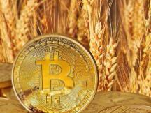 美图豪赌比特币:已购买1亿美元加密货币 相当于全年毛利
