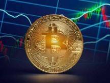 未来可期:比特币将上涨至 100 万美元