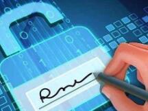 重庆打造全国首个区块链生猪监管电子签章平台,区块链如何助力电子签章领域?
