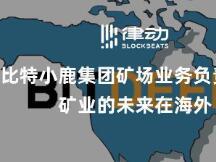 专访比特小鹿集团矿场业务负责人王文广:矿业的未来在海外