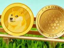 """比特币不再是""""万众宠儿""""?ADA、DOGE 成为最受 eToro 美国用户欢迎的加密货币"""