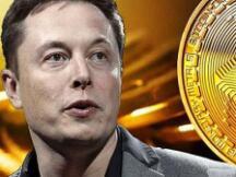 Elon Musk为何突然向加密社区示好?