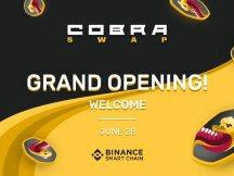 CobraSwap 是一个相当新的去中心化交易所 (DEX) 第一个自动做市商 (AMM),市场上的最低汇率为 0,088%