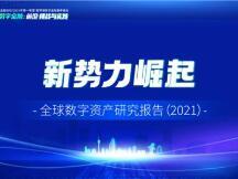 新势力崛起——全球数字资产研究报告(2021)