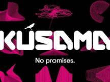 Kusama 的价值究竟在哪 为什么说它很重要?