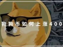 全面复盘:狗狗币是如何上涨400倍的?