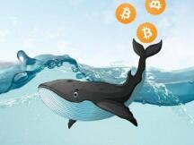 """真实数据显示比特币新高之前""""巨鲸""""已开始倾销,抛售超93000枚BTC"""