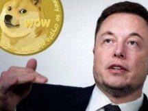 第一个狗狗币万亿富翁?马斯克再次发推支持狗狗币