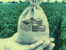 邹传伟:数字货币、数字资产与数字金融
