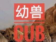 成长中的幼兽CUB,崛起中的去中心化交易所三巨头