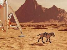 马斯克:我准备把狗狗币送上月球