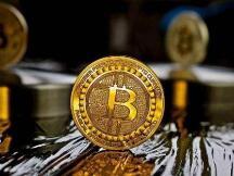 谷燕西:比特币正在成为一种世界货币