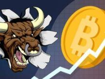 期货交易员Adam Mancini关注加密货币,预测比特币六个月内将突破2.4万美元