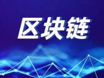 海南省实施区块链应用示范揭榜工程方案