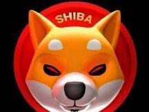 """SHIB""""盛宴"""",多家交易所上演割韭菜大戏"""
