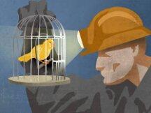 煤矿里的金丝雀:比特币下跌或预示着更大的市场泡沫破裂