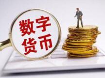 私人货币和央行货币在支付数字化中的发展