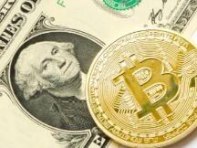 彭博社:比特币要么归零,要么达到50万美元