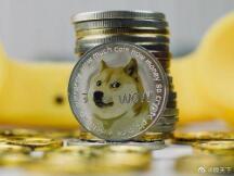 狗狗币一天暴涨逾250%