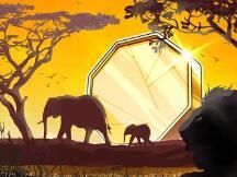 Chainalysis: 非洲交易员最不可能相信加密诈骗