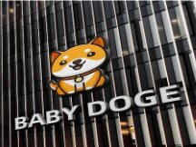 危险动物园:BabyDoge,西方重提「模式币」