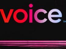 EOS柚子的暴涨是否得益于Voice带来的改变?