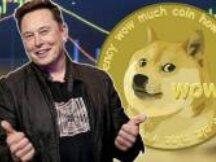 Elon Musk 正在失去他在加密领域的影响力吗?