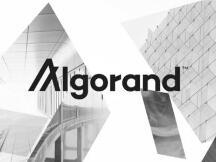 速览Algorand新版去中心化治理提案亮点