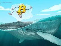 分析师:鲸鱼流入交易所的比特币数量激增,比特币可能出现大幅修正