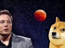 马斯克再次喊单狗狗币,投资如何被消解成为一场娱乐活动?