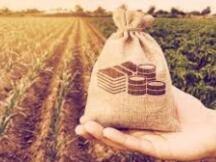 DeFi生态系统迅速发展 上月代币总市值增长了3倍