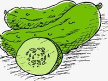 PickleFinance希望为DeFi带来稳定的发展