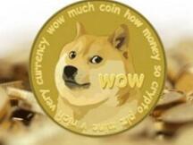 社区币代表 DOGE:Meme 正在影响投资逻辑