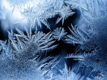 提前「入冬」的收益会将DeFi生态带入死亡螺旋吗?