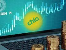 Chia FOMO 下详解经济账:成本与收益究竟如何