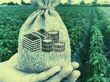 Yield Farming为什么这么火? DeFi到底能做什么?